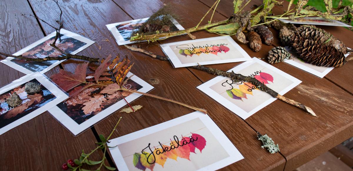 Pöydällä risuja, oksia, lehtiä ja kasvinosia, sekä kortteja. Näistä materiaaleista leirillä valmistettiin omiakuvia..